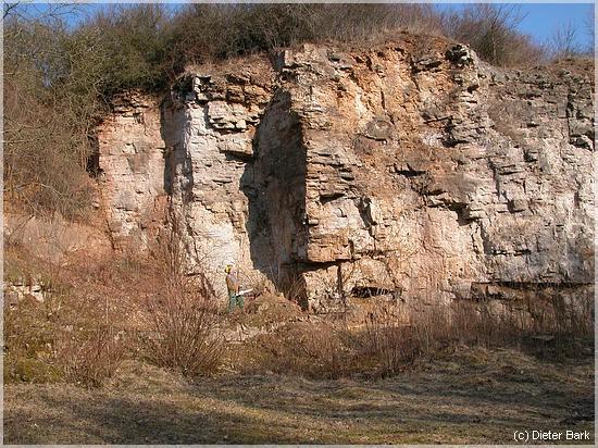 Perfekt C) U201eSteinbruch Berndorfu201c. Höhlenbrüter, Amphibien. Schuttflora,  Gebüschzonen Für Kleinvögel.